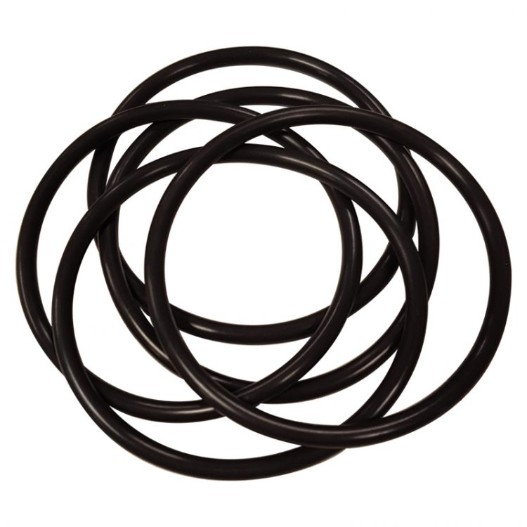 Sample Well O-ring, Viton (Pack of 5) - 13740-004 product image
